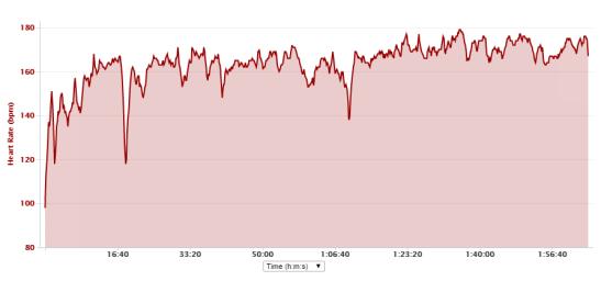 Test 2 - Bacchus Half Marathon  Garmin 110 Trace