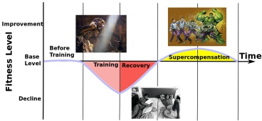 A simplified explanation of the training cycle. In reality, this probably looks more like the world's most convoluted roller-coaster.